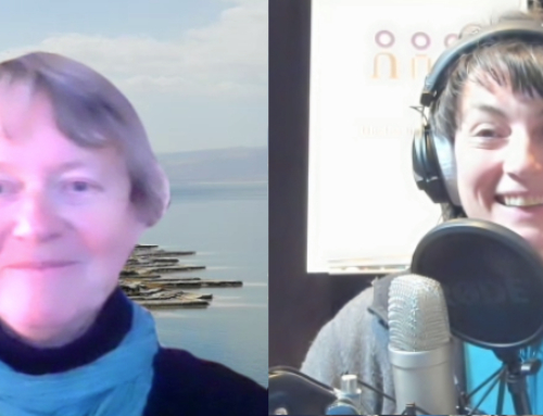 Podcast #SciencemanagersForFuture meets Professorin Ingrid Hemmer